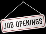 Some Companies Hunting Top Talent Despite Salary Job Cuts