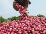Onion Prices Jump By Over 50 Percent In Bangladesh After India Bans Exports