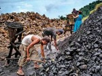 Foreign Companies Not Interested In Indian Coal Auction 40percent No Bidding For Mines