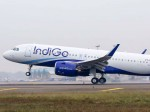 Indigo Is Making A Plan To Start Flights From Seven New Cities