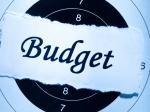 Budget Terminology: గెట్ రెడీ.. బడ్జెట్ను ఈజీగా అర్థం చేసుకోవచ్చు.. అంతు చిక్కని పదాలకు అర్థాలివే..