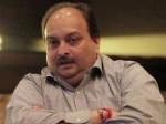 Mehul Choksi case: డొమినికా హైకోర్టులో CBI, MEA ఇంప్లీడ్మెంట్ అప్లికేషన్లు