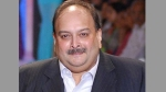 Mehul Choksi case: ఆయనే మాస్టర్మైండ్: డొమినికా హైకోర్టులో సీబీఐ అఫిడవిట్