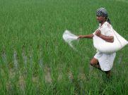 జగన్ అనూహ్య నిర్ణయం, ఒక్క రూపాయికే పంటబీమా: ఇలా చేరండి
