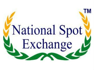 What Is National Spot Exchange Nsel