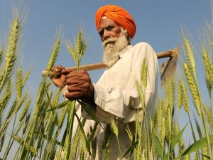 Ex Rbi Chiefs Oppose Farm Loan Waiver