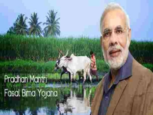 Implementation Hurdles The Pmfby Is Creating Troubles Farmer
