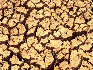Droughts May Be Thing The Past 1 65 Lakh Farmer Families And