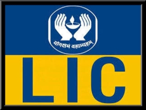 Lic New Policy