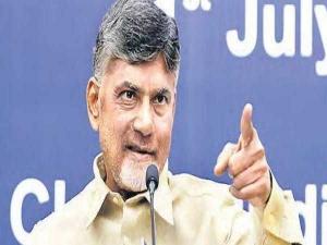 Telugu Desham Party Schemes
