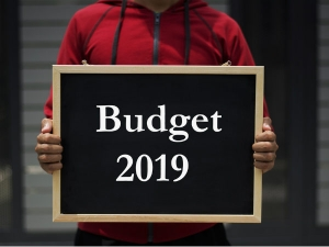 Will The Interim Budget Be Favorable All Sections Society