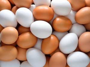 Egg Price May Hike In Next Month