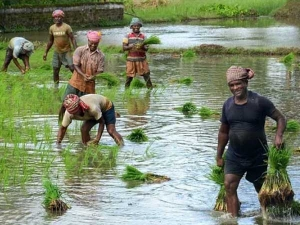 Telangana Government Released Rythu Bandhu Funds To Farmers