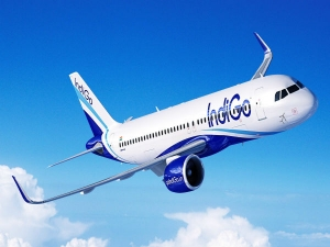 Indigo Ceo Assures Employees As Promoters Feud In Public