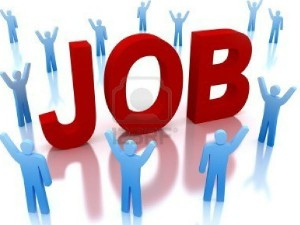 Highest Paying Jobs India Top Salaries