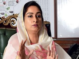 Food Processing Sector Create 4 Lakh More Jobs Fy 19 Badal