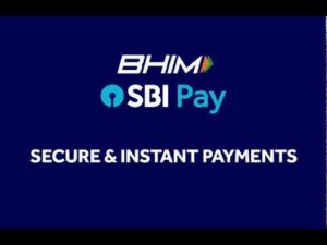 How Avail Up 5 Litres Free Petrol Through Bhim Sbi Pay