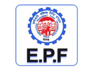 How You Can Transfer Your Epf Account Check Steps