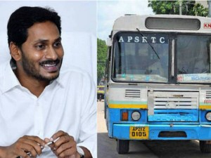 Andhra Pradesh Government Gift To Rtc Employees