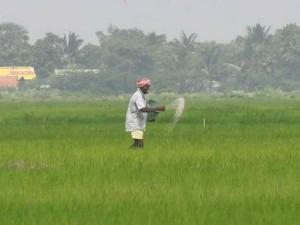 Govt Saves 1 54 Bn In First Year Of Fertiliser Dbt Implementation