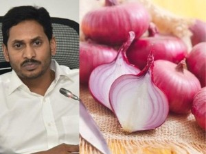Andhra Pradesh Govt To Sell Onion For Rs 25 Per Kg At All Markets