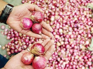 High Price Of Onion Brings Cheer To Farmers