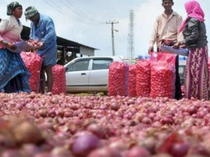 Govt To Import 1 Lakh Tonnes Onion To Check Price Rise Union Minister