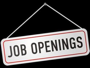 Lakh Jobs Created Till November In Fy