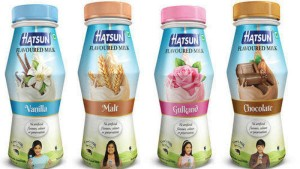 Hatsun Agro To Set Up Ice Cream Plant In Sangareddy