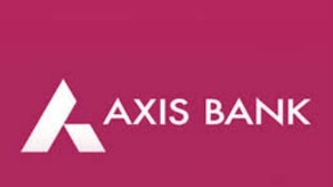 Business Optimism Returning Economic Recovery To Be L Shaped Axis Bank Md