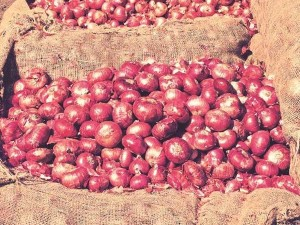 Why Onion Prices Are Rising How The Government Has Responded